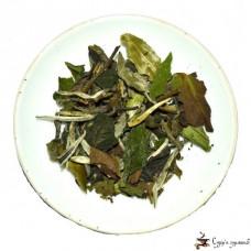 Белый чай Gurmans choice Бай Мудан высокогорный 25г